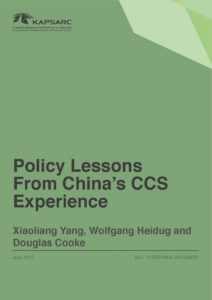 Policy Lessons From China's CCS Experience