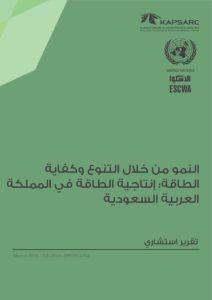 النمو من خلال التنوع وكفايةالطاقة: إنتاجية الطاقة في المملكةالعربية السعودية