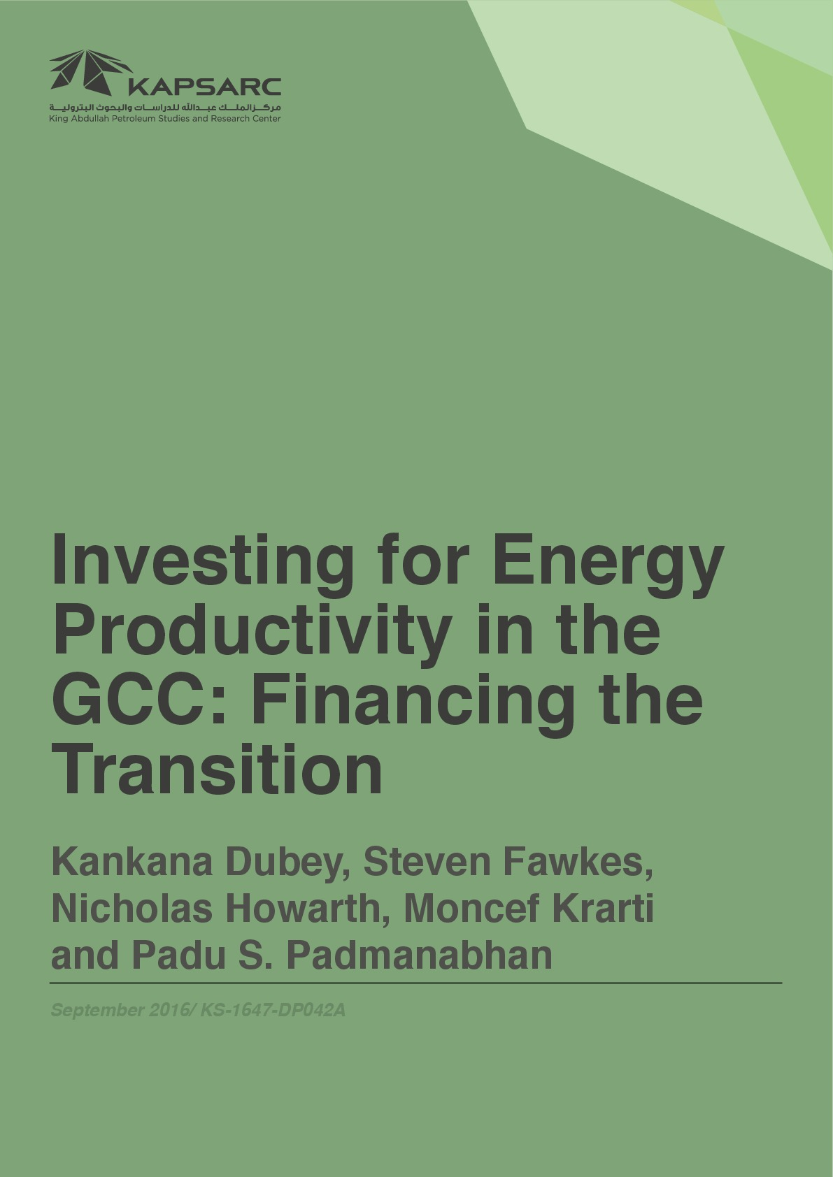 Investing for Energy Productivity in the GCC – Financing the Transition