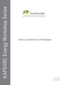 China's Sustainable Fuel Strategies