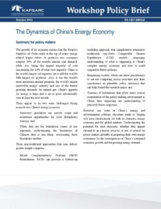The Dynamics of China's Energy Economy