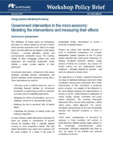 Government intervention in the micro-economy: Modeling the interventions