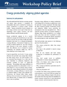 Energy productivity: aligning global agendas
