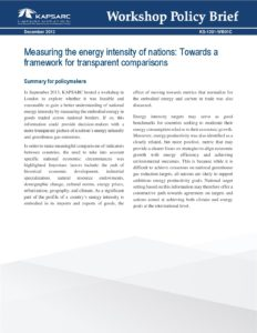 Measuring the energy intensity of nations: Towards a framework for transparent comparisons