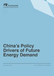 China's Policy Drivers of Future Energy Demand