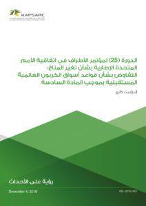 الدورة (25) لمؤتمر الأطراف في اتفاقية الأمم المتحدة الإطارية بشأن تغيّر المناخ