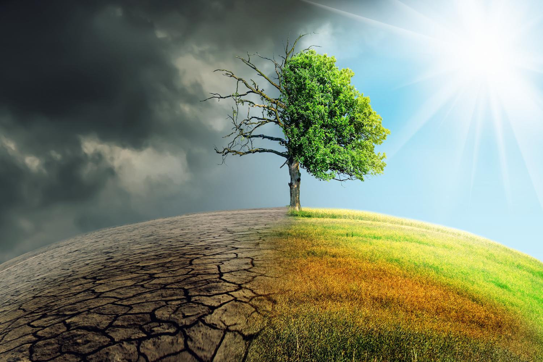 تشكيل الحوكمة العالمية للطاقة وتغير المناخ: منظور جانب العرض