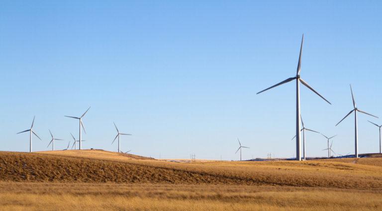 كابسارك يناقش إدارة تحولات الطاقة في الدول النامية بمشاركة المجلس الهندي لبحوث العلاقات الاقتصادية الدولية ومجموعة الفكر  العشرين (T20)