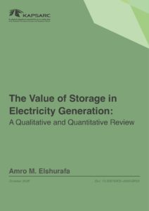 The Value of Storage in Electricity Generation: A Qualitative and Quantitative Review