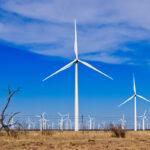 ما الذي تعلمناه من تجربة تكساس مع انقطاع التيار الكهربائي؟